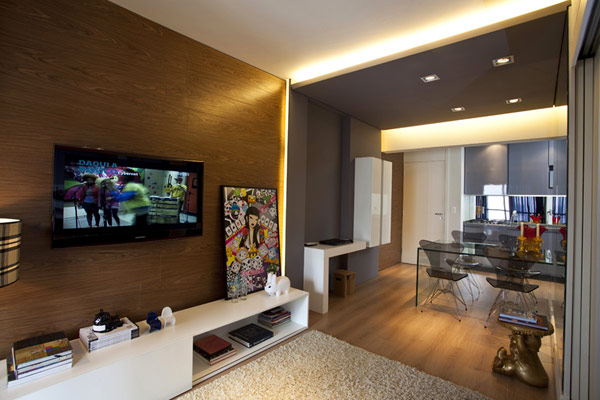10 Innovative Small Apartment Designs Ideas