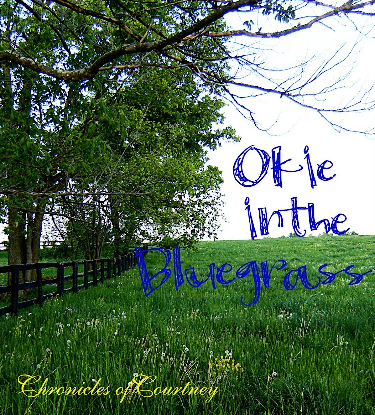 Okie in the Bluegrass