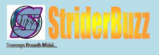Strider Buzz