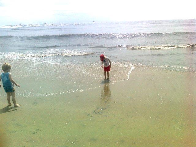 cochin beach,kerala