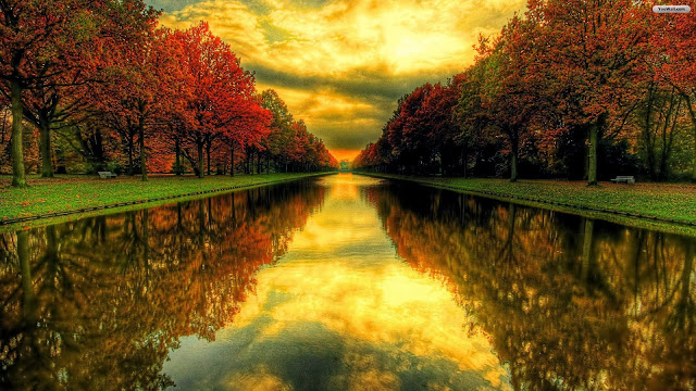 http://digntaswpp.com/autumn-backgrounds-wallpaper-widescreen.html