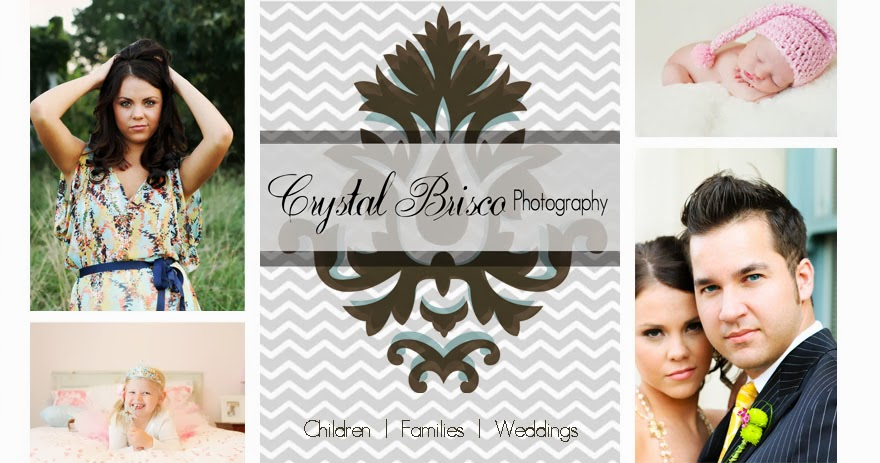 Crystal Brisco Photography