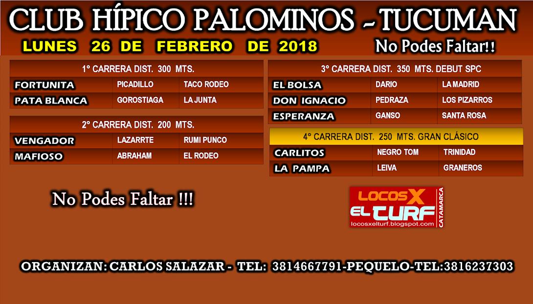 26-02-18-HIP. PALOMINOS-PROG.