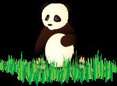 Persistent Panda