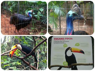 Parque das Aves, Foz do Iguaçu - PR