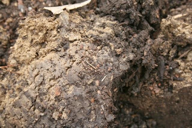 The flower bin spring soil amendments for vegetable gardens for Soil amendments