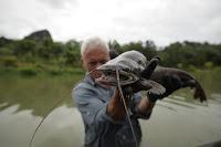 Sareng Catfish
