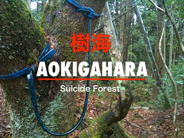 AOKIGAHARA SUICIDE FOREST 2012