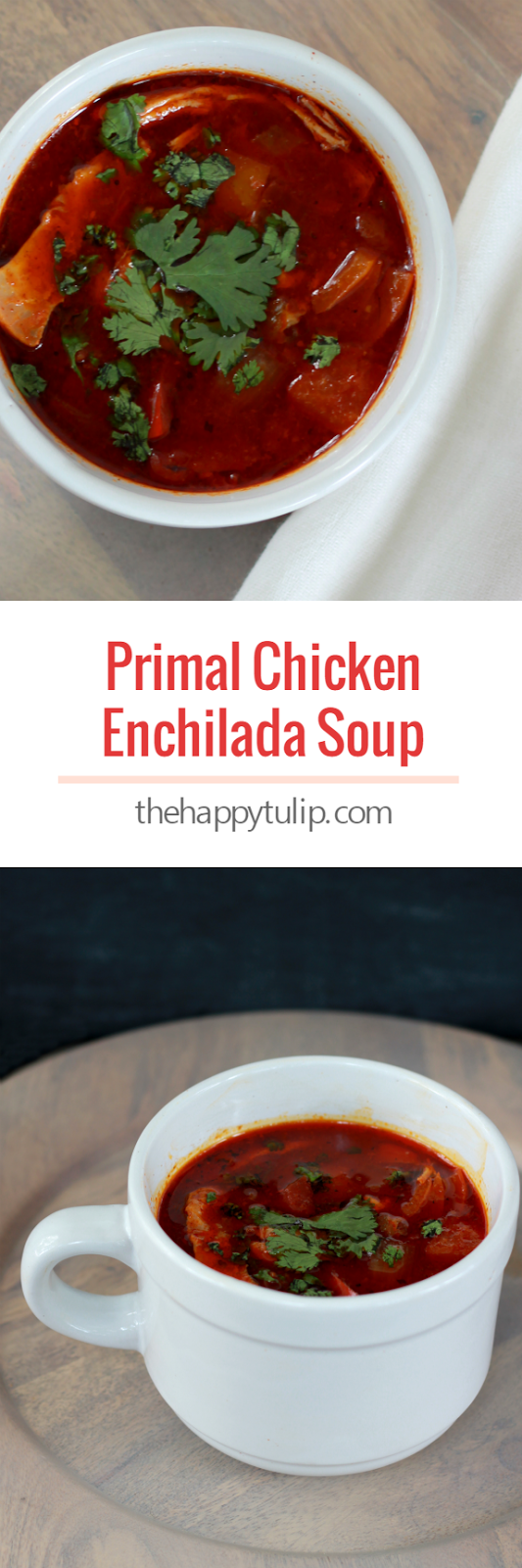 primal chicken enchilada soup with homemade primal enchilada sauce