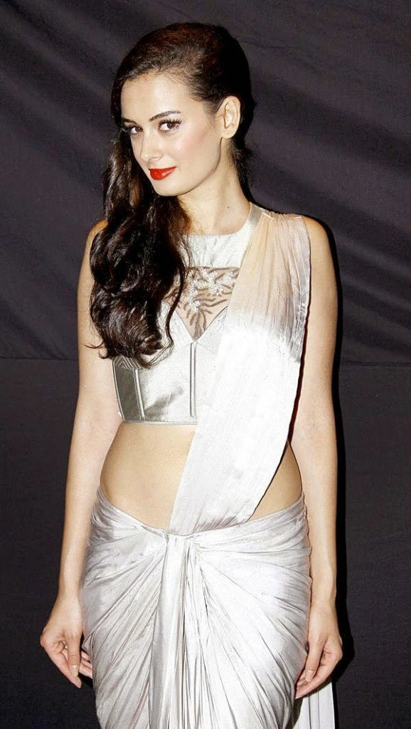 evelyn sharma hot navel hd photo
