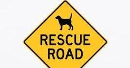 Výsledek obrázku pro rescue road book