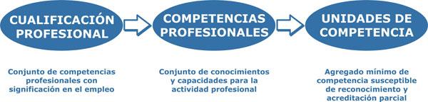 Cualificación, Competencia, U.C.
