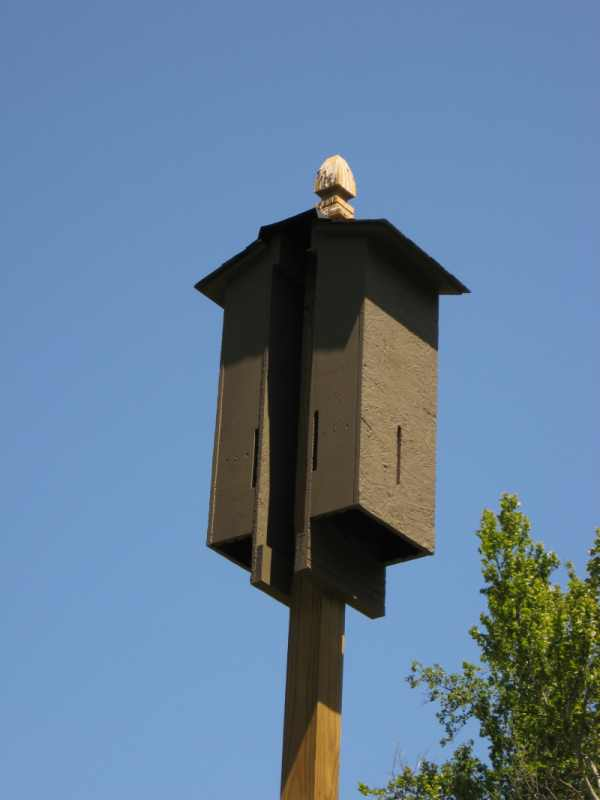 My Father 39 S World Bat Houses