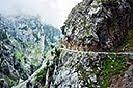 11 Fotografías, de la ruta del Cares, Asturias
