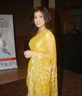 Pallavi Sharda in a Saree