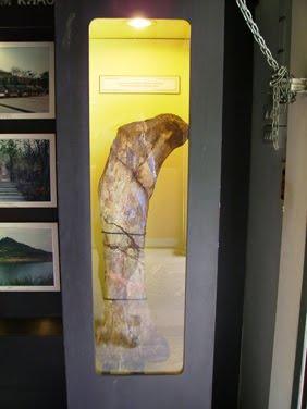 กระดูกชิ้นใหญ่ บริเวณหลุมขุดค้น ไดโนเสาร์ ภูกุ้มข้าว