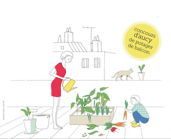 Votre sachet de graines D'Aucy gratuit: concours D'Aucy de potager de balcon Echantillon gratuit D'Aucy