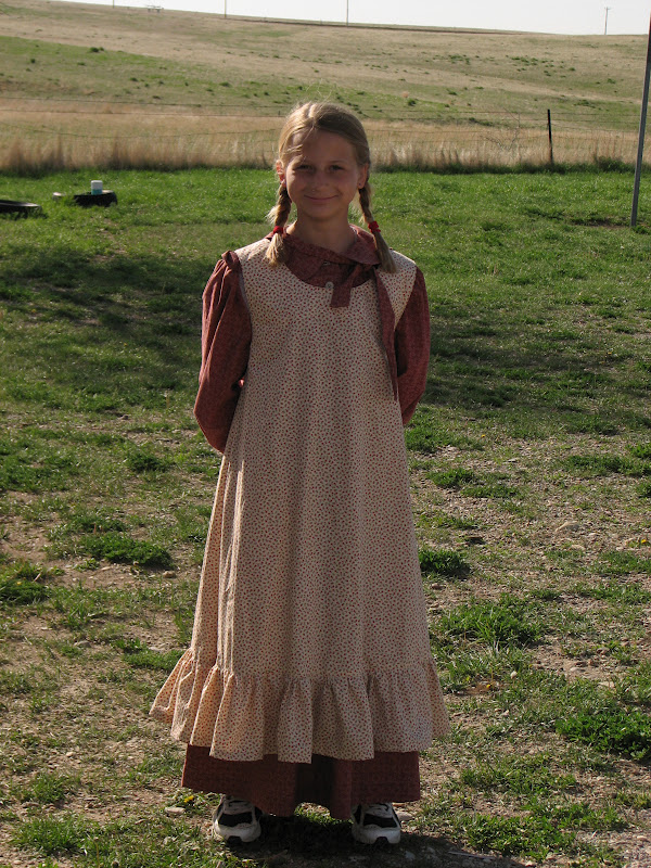 Little house on the prairie book report