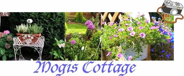Mogi´s Cottage