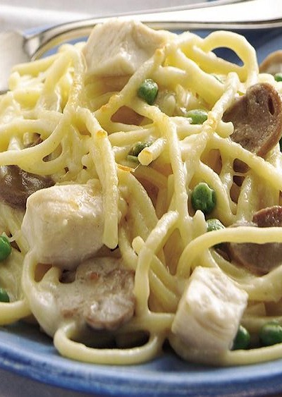 Slow Cooker Chicken Tetrazzini - The Best Recipes