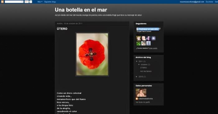 http://unabotellaenelmar-catalinaladivina.blogspot.com/