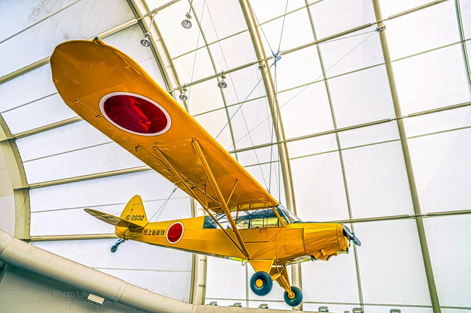 パイパー L-21B スーパーカブの写真