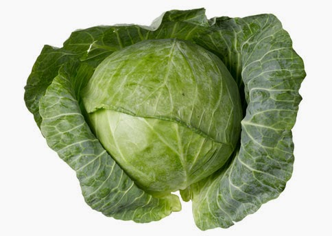 cabbage-436