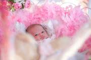 Baby Sofea