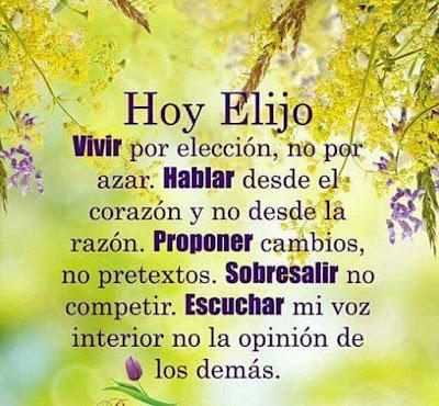 Hoy Elijo Reflexion