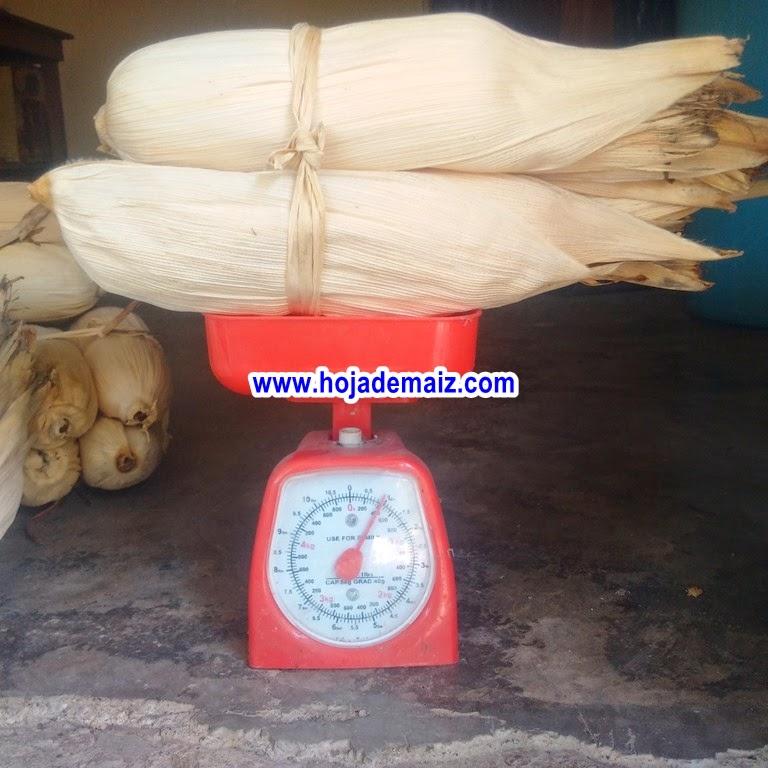 Hoja de maíz para tamal de veracruz