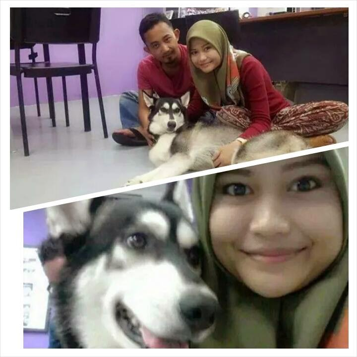 Cerita Sebenar Wanita Bertudung Bergambar Dengan Seekor Anjing Menjadi Viral Di Facebook