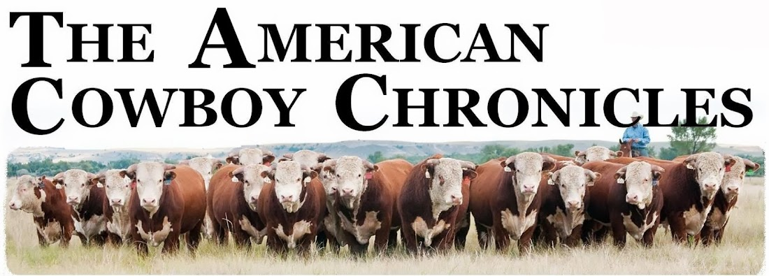 THE  AMERICAN COWBOY  CHRONICLES