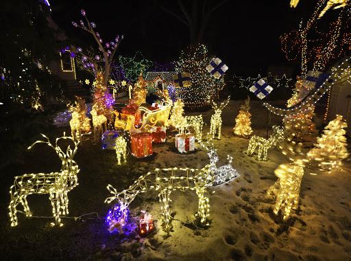 Backyard Christmas Light Ideas - Home Design Interior: Backyard Christmas Light