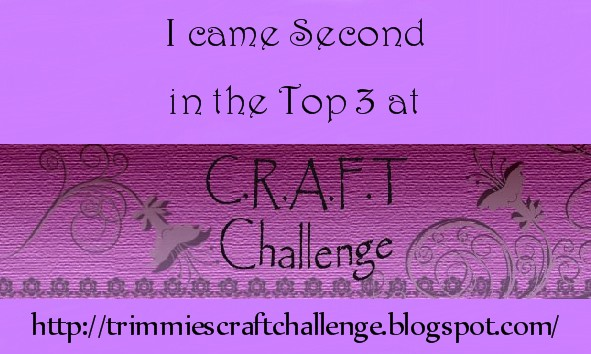 Top 3 at CRAFT challenge