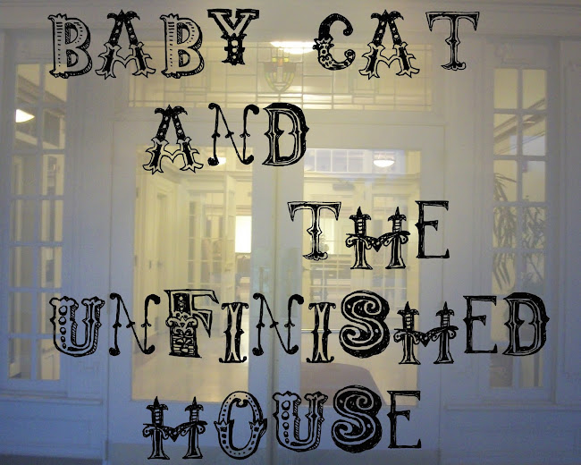 Baby Cat and the Unfinished House