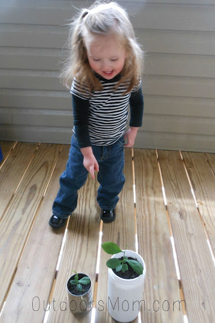 3 Simple Science Experiments to Teach Kids About Plants