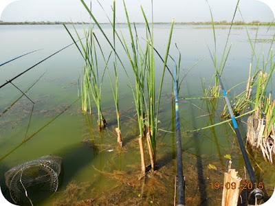cel mai frumos loc de pescuit