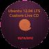 Menyesuaikan Ubuntu 12.04 LTS Desktop Live CD