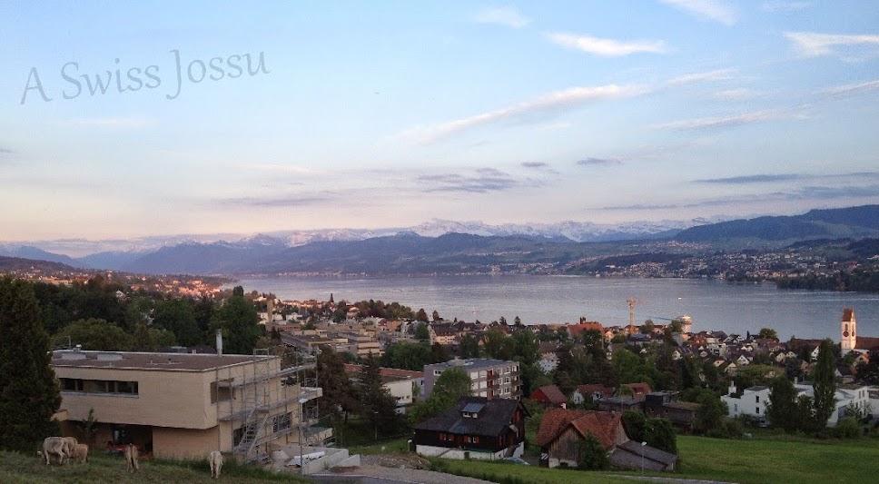 A Swiss Jossu