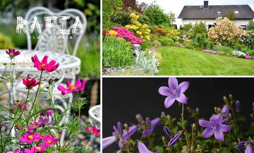decoración de jardín, plantas, flores, consejos para decorarlo floristeria rafia ourense