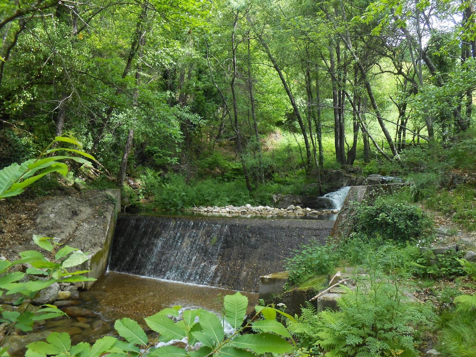 Lugares con encanto, bosques, ríos