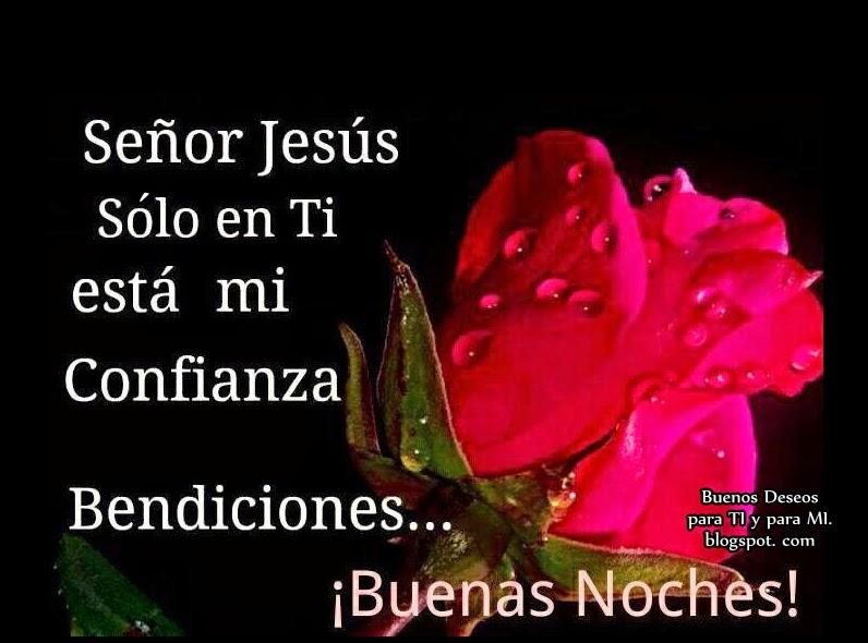 Señor Jesús, Sólo en TI está mi Confianza. Bendiciones...  Buenas Noches !