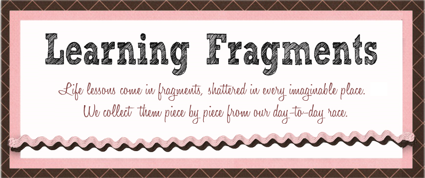 Learning Fragments