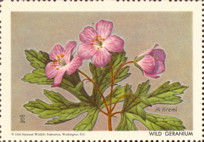 1956 National Wildlife Federation Wild Geranium