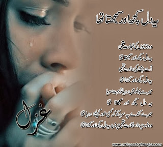 urdu ghazal shayari photo