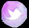 Twitter-DaniJ72