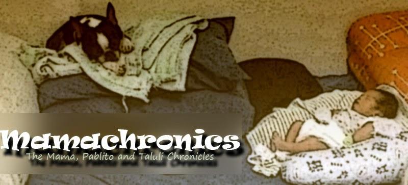Mamachronics