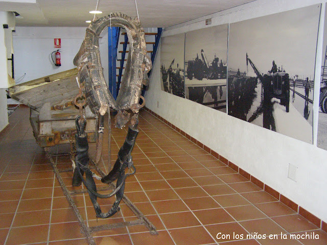 salinas-Santa-Pola