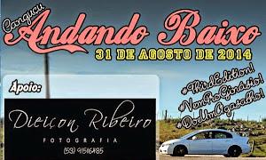 ENCONTRO CARROS REBAIXADOS/CANGUÇU