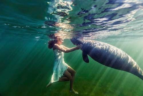 Neptune - The Sea